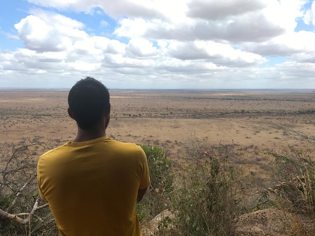 4 Días de Safari II